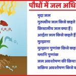 मृदा जल |मुरझाना |प्रकार |म्लानि गुणांक |जल अवशोषण